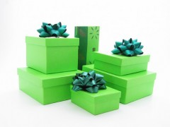 GreenHoliday_Feature