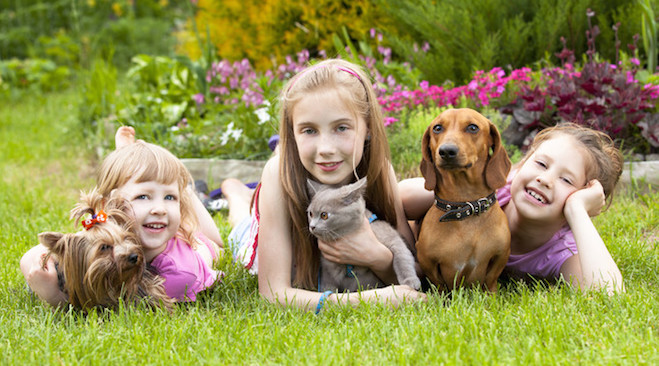 How To Help Kids Cope With The Loss Of A Pet