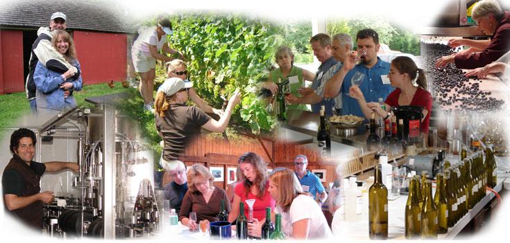winecamp
